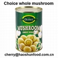 canned whole Mushroom in brine