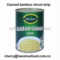 Canned bamboo shoot strip in brine salty