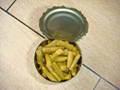 Canned green Beans cut in brine made by fresh material 2