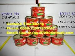 Tomato Paste brix 28/30, 22/24, 18/20