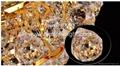 gold K9 crystal  AM2240-9 2