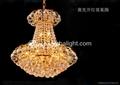 gold K9 crystal  AM2240-9 3
