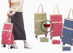 Folding shopping bag (OW-102CS)