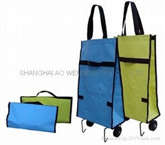 Folding shopping bag  OW-102C(6DPVC)