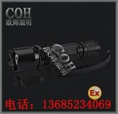 BXD6011強光防爆手電筒BXD6011