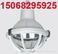 CBD52-e增安型防爆防腐燈