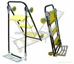 Super trolley ladder