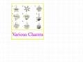 2011 fashionable alloy charm