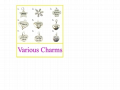 2011 fashionable alloy charm