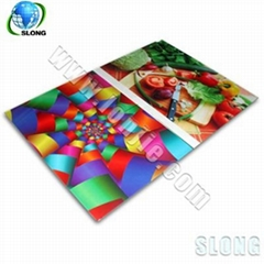 热销龙杰A2-900玻璃平板打印机