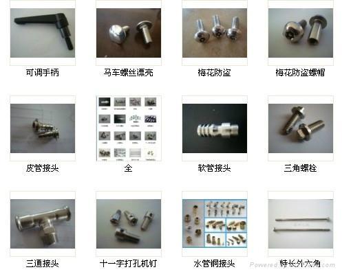 不鏽鋼圓柱頭螺絲 1