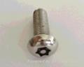 不鏽鋼圓柱頭螺絲 4