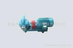 厂家直销CHY直流齿轮油泵