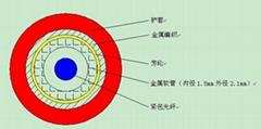 DTS温度感测光缆