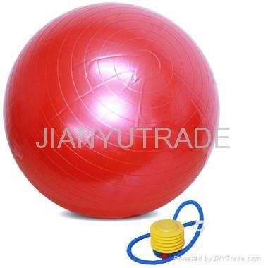 Exercise Ball 1