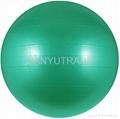Exercise Ball 3