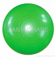 Exercise Ball 5