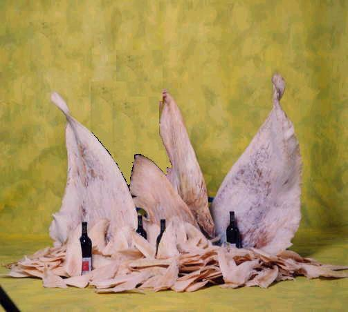 DRIED SHARK FINS SKINLESS