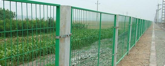 Wire Mesh Fence 3