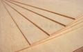 大王椰板材生態多層板 1