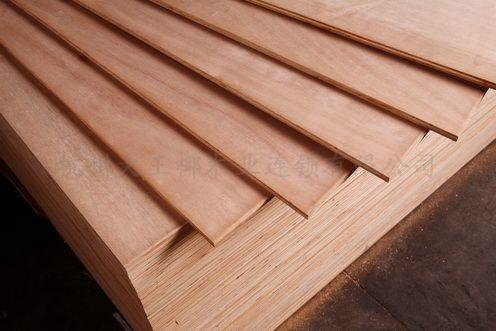 大王椰板材生態多層板 2