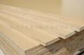 大王椰板材免漆板