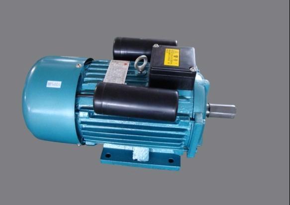 Single phase induction motor yl100l yitong china for Protection of 3 phase induction motor