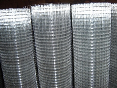 pvc coate   a  anized welded wire mesh