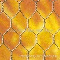 hexagonal wire mesh 5