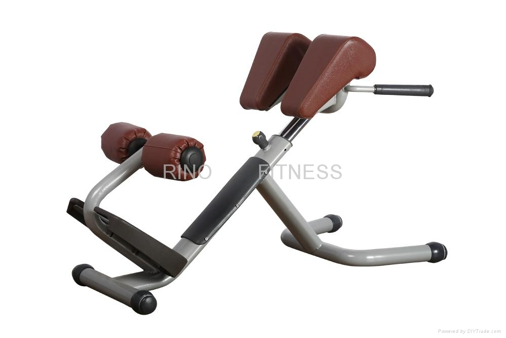 Fitness Equipment Lower Back Bench Rn 825 Rino China Manufacturer Body Building