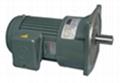 万鑫电机GVM立式直结型齿轮减式机 1
