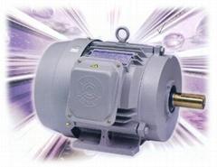 变频电机型号MDSP-315S-2