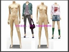 无头时尚女装模特