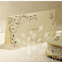 2012 Modern Wedding Invitation Card printing