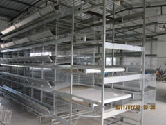 automatic layer cage