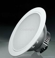 LED down lighter 8 inch 20W