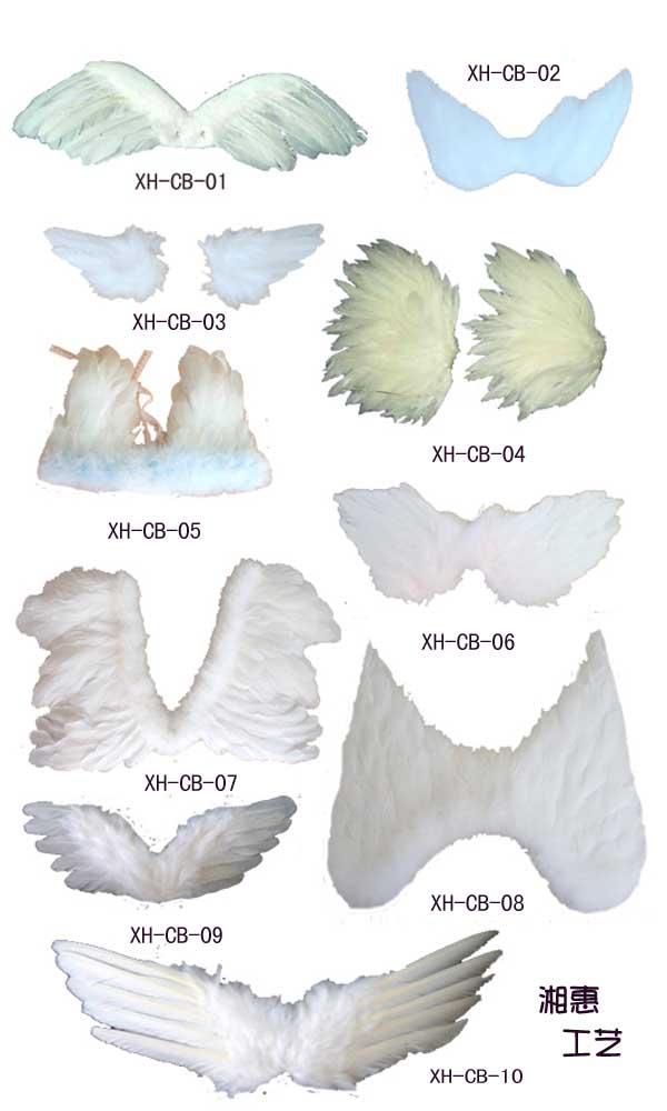 羽毛翅膀 1