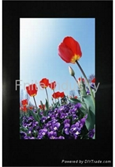 Fnite 22 inch vertical lcd advertising player