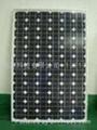 单晶硅250W太阳能电池组件 3