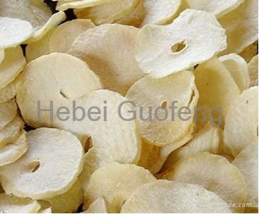 Freeze dried garlic slice 2