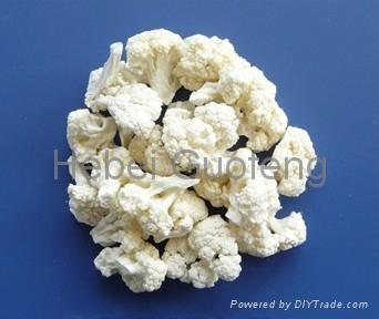 Freeze dried broccoli 1