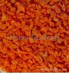 Air dried carrot slice