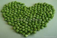 凍干甜豌豆