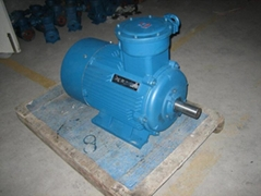 YB2 Series Explosion-Proof Three Phase Induction Motor