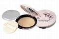 cosmetic pressed powder