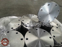 EN1092-1 TYPE05 1 PN16 DN300 FORGED FLANGES