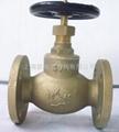 Marine bronze at globe va  es