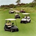 高尔夫球车 1