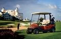 高尔夫球车 4
