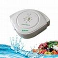 萊森水處理臭氧消毒機